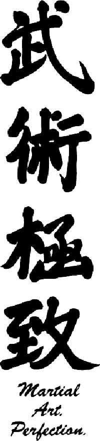 Martial Arts Perfection
