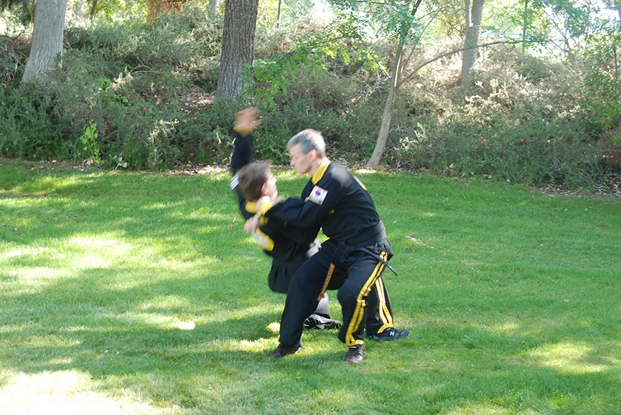 Aikido Hapkido 1