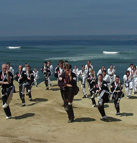 Dozens of people doing Kung Fu by the ocean
